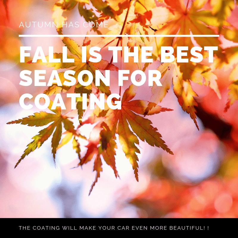 秋はコーティングのベストシーズン!